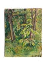 bosco-olio-su-cartone-37x48-1949-rosanna-forino