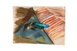 il-picchio-morto-2-35x28-olio-su-tela-rosanna-forino-1959
