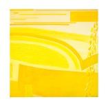 Monocolore giallo Rosanna Forino 100x100 acrilico e collage su tela 2003Monocolore giallo Rosanna Forino 100x100 acrilico e collage su tela 2003 a